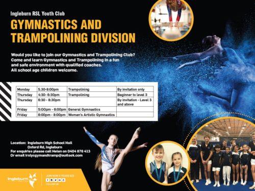 IRSL Gymnastics Team